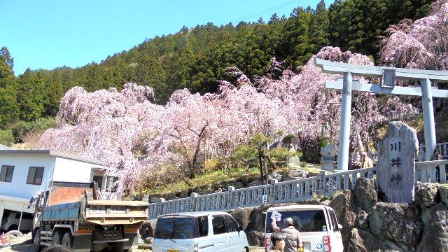 川井峠7.jpg