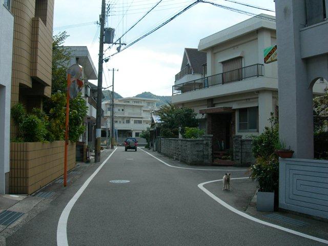 民宿クボタ3.jpg