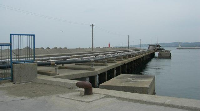 湊港埋立地11.JPG