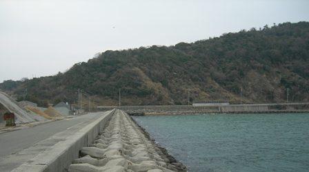 湊港埋立地26.JPG