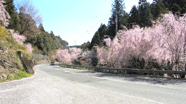 神山町3.jpg