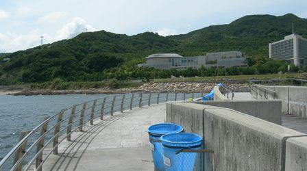 翼港12.JPG