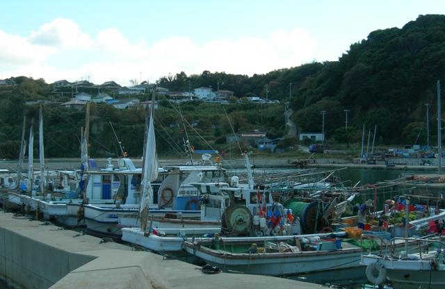 船瀬漁港10.JPG