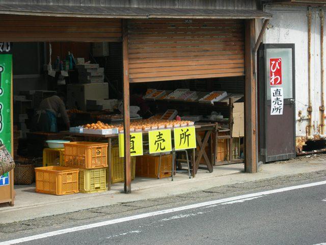 野島地区6.jpg