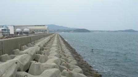 湊港埋立地5.JPG