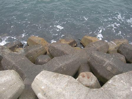 湊港埋立地7.JPG
