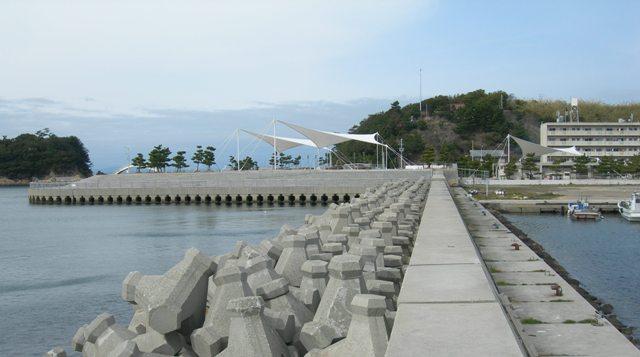 丸山漁港19.JPG