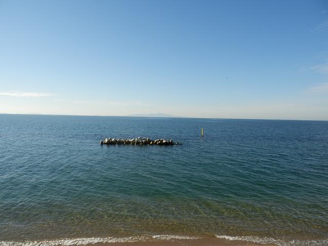 五色浜25.jpg