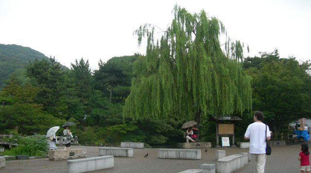 円山公園12.JPG