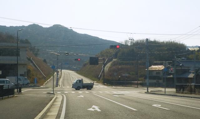 南淡路水仙ライン3.jpg