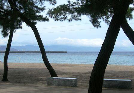 大浜海水浴場21.jpg