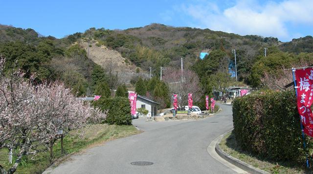 広田梅林ふれあい公園1.jpg
