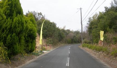 水仙の丘8.JPG