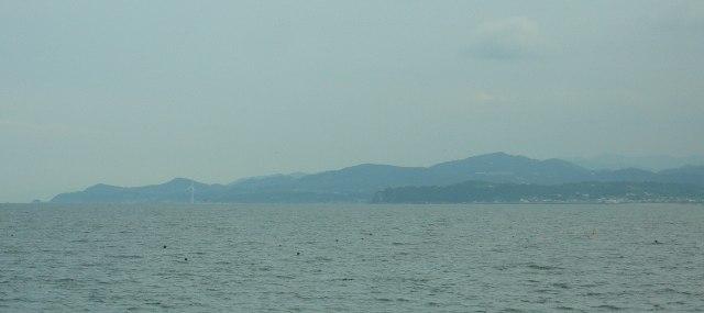 津井漁港04.JPG
