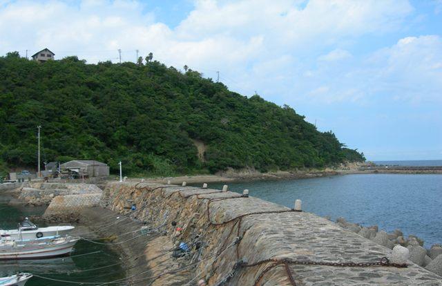 津井漁港10.JPG