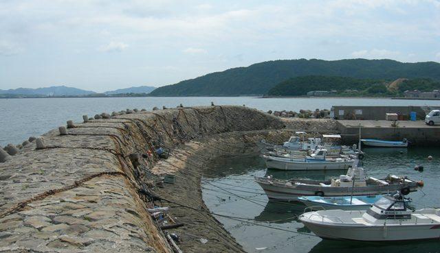 津井漁港12.JPG