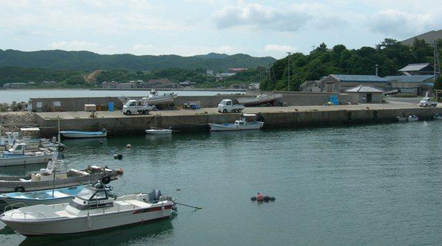 津井漁港13.JPG
