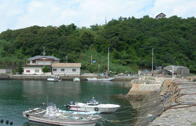 津井漁港16.JPG
