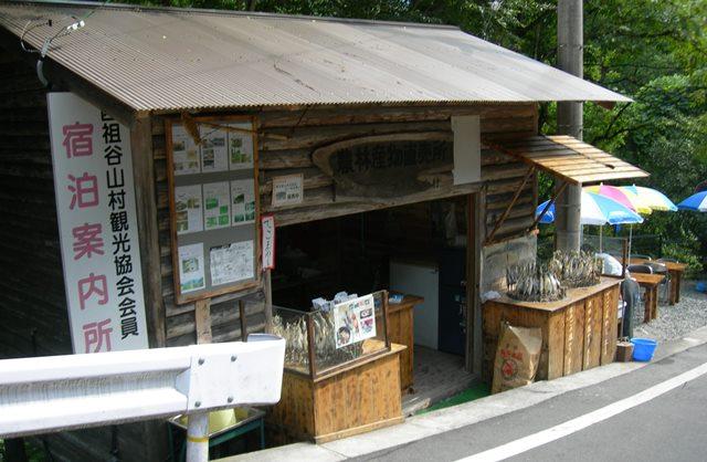 祖谷かずら橋11.jpg