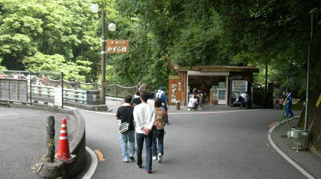 祖谷かずら橋13.jpg