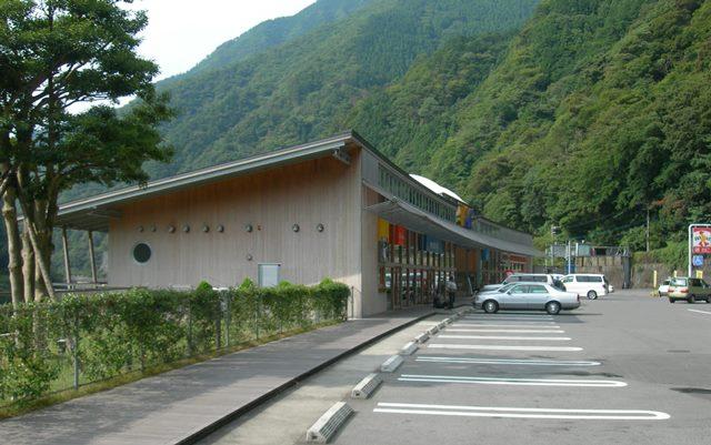 祖谷かずら橋2.jpg