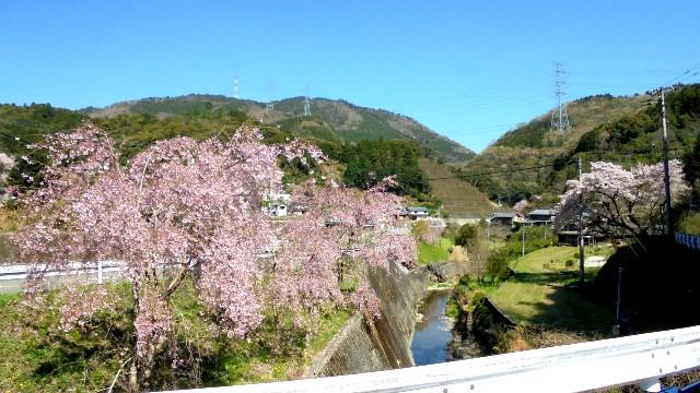 神山町1.jpg