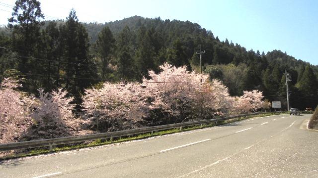 神山町4.jpg