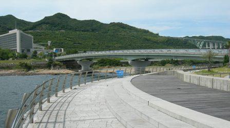 翼港13.JPG