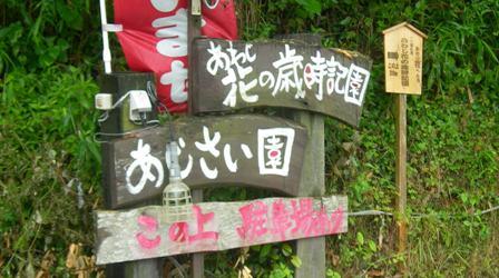長沢16.JPG