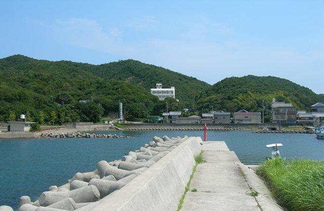 阿那賀漁港10.JPG