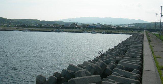 鳥飼漁港22.JPG